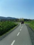 Cyklostezka Koleje